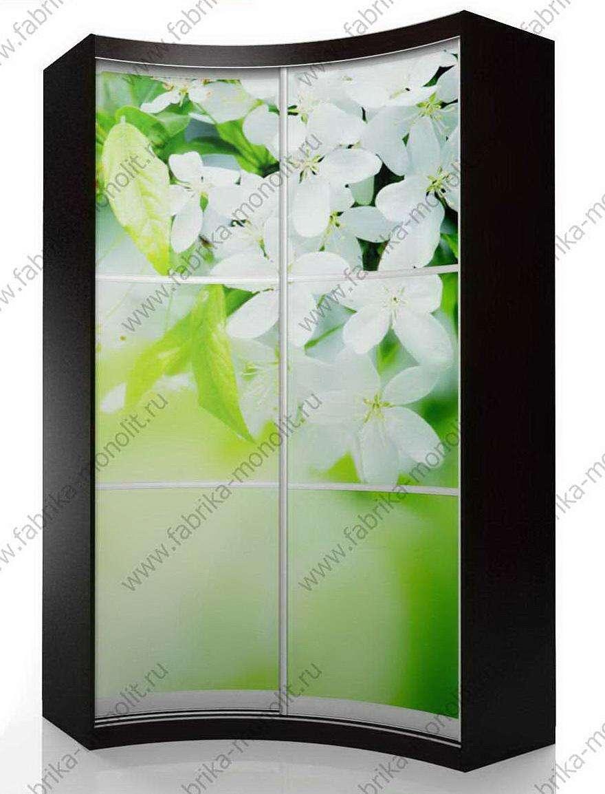 Радиусный шкаф-купе мебелеф фотопечать 8-16 купить за 23000 .